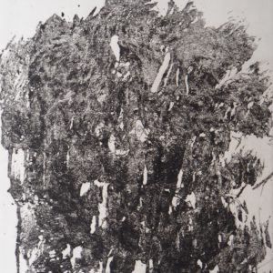 Vue de Patusan V